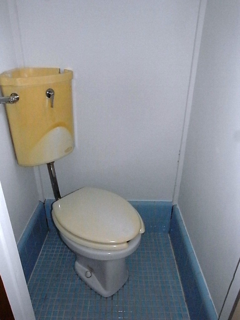 Toilet (Bath & Separate toilet)