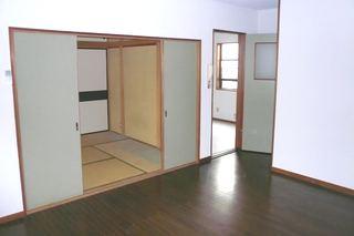 Living Room (Spacious 1LDK)