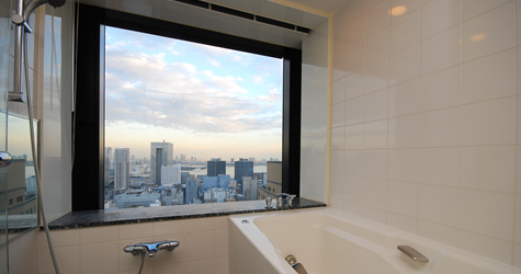 Bathroom (Enjoy the view)