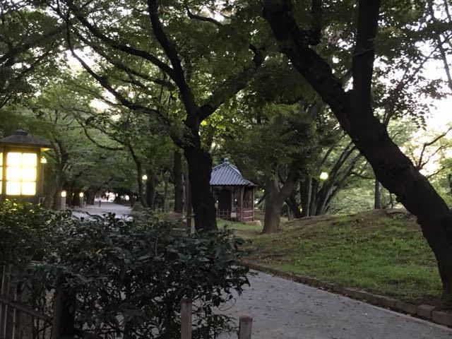 Neighborhood (Asukayama Park)