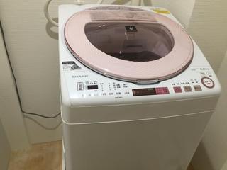 Common Area (Washing Machine)
