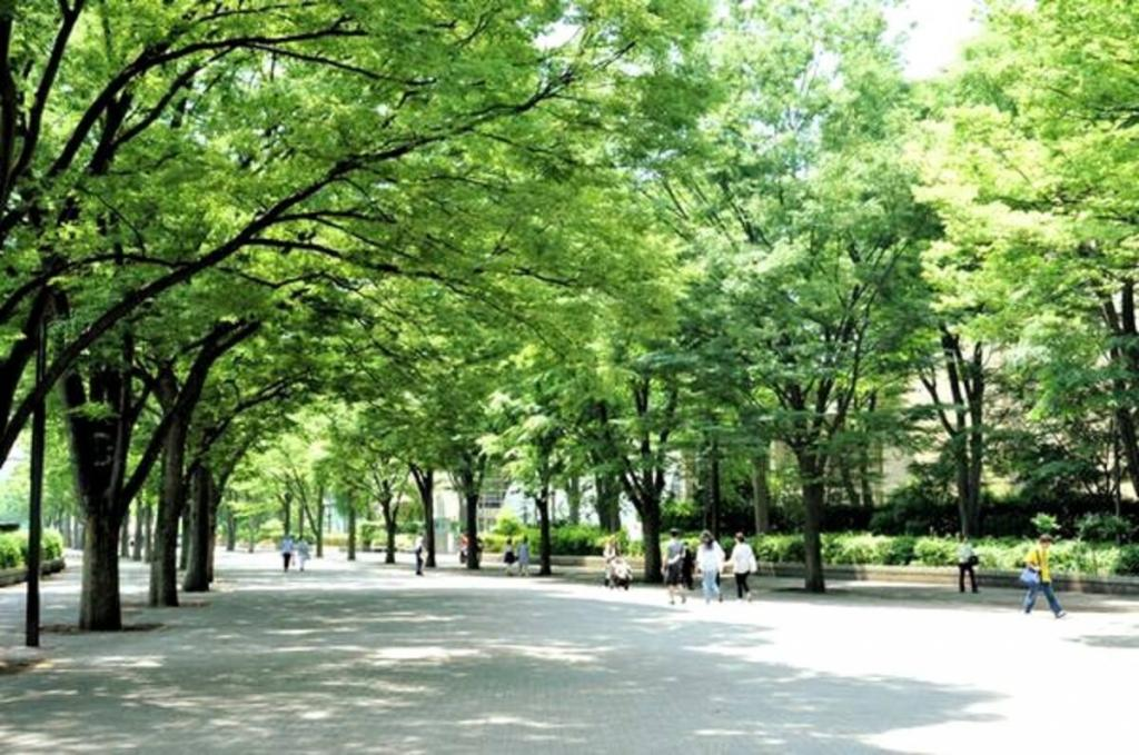 Neighborhood (Yoyogi Park)